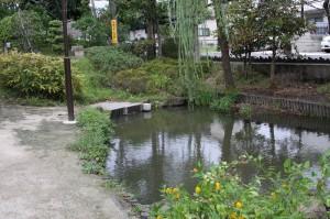 小松川境川親水公園